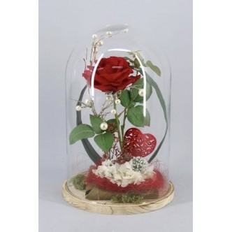 Cúpula de Amor con Rosa Eterna